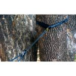 11-06-2019_Ticket_To_-The_Moon_TMLSTRAP_Lightest_Strap_Studio_In_Use_tree
